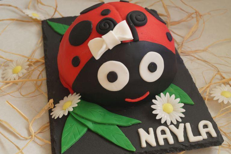 ladybird-cake-5