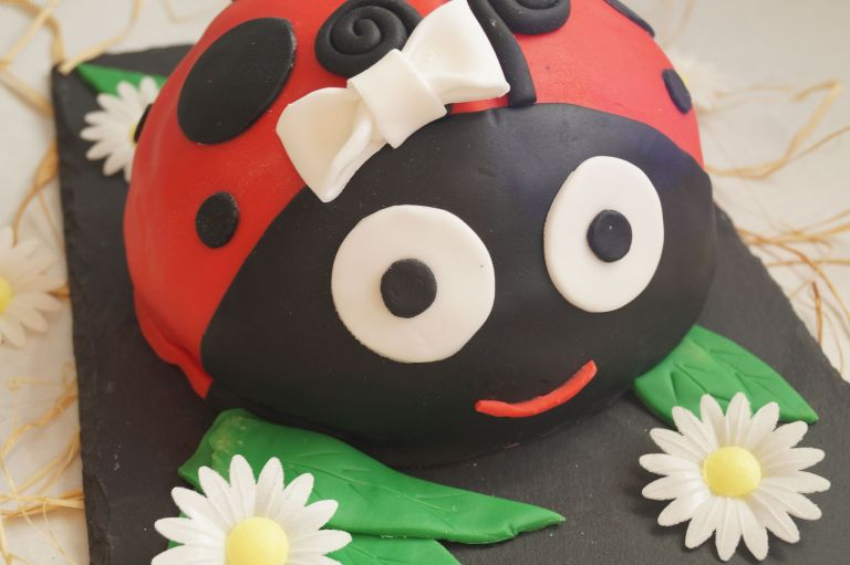 ladybird-cake-close-up