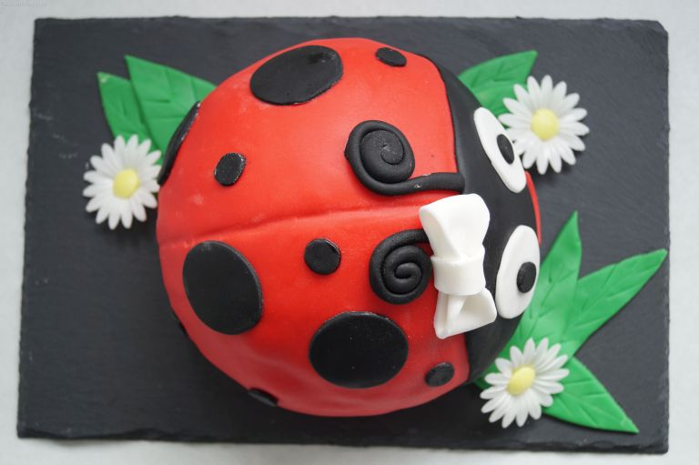 ladybird-cake-from-above