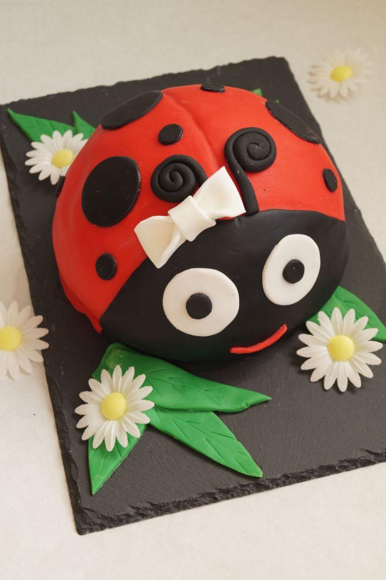 ladybird-cake